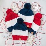 Cappelli stabiliti della famiglia di inverno Insieme dei vestiti e degli accessori Fotografia Stock