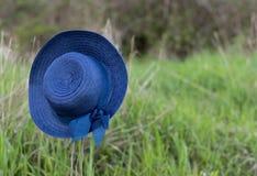 Cappello blu di Sun che appende sul gambo morto Fotografia Stock Libera da Diritti