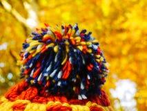 Cappello con il pompon variopinto e foglie dorate nei precedenti fotografie stock libere da diritti
