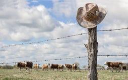 Cappello da cowboy che appende sulla trave mentre il bestiame pasce nel fondo Immagine Stock