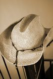 Cappello del cowboy di Cepia Immagine Stock Libera da Diritti