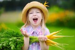 Cappello di paglia d'uso della bambina sveglia che tiene un mazzo di carote organiche fresche Immagine Stock