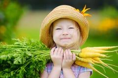 Cappello di paglia d'uso della bambina sveglia che tiene un mazzo di carote organiche fresche Fotografia Stock Libera da Diritti