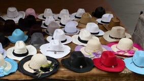 Cappello di Panama Fotografie Stock Libere da Diritti