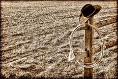 Cappello e Lasso ad ovest americani del cowboy del rodeo sulla rete fissa Fotografie Stock