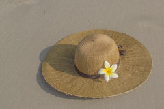 Cappello e plumeria di paglia Fotografie Stock