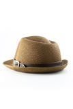 Cappello per il viaggio Fotografie Stock Libere da Diritti