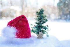 Cappello per Santa e l'albero di Natale minuscolo Fotografie Stock Libere da Diritti