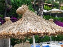 Cappello stupefacente del parasole della paglia fotografia stock