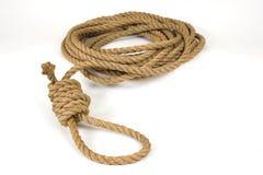 Cappio della corda Immagine Stock