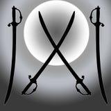 Cappotto della siluetta della spada di Siver Sun delle braccia Fotografia Stock Libera da Diritti