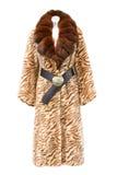 Cappotto di pelliccia del Brown Fotografia Stock Libera da Diritti