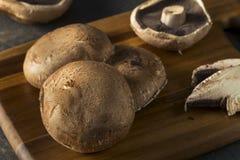 Cappucci crudi organici sani del fungo di Portobello Fotografie Stock