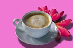 Cappuccino στο άσπρο γυαλί, plumeria κοντά στο ρόδινο υπόβαθρο Στοκ φωτογραφία με δικαίωμα ελεύθερης χρήσης