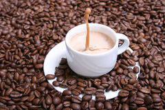 cappuccino. Fotografia Royalty Free