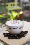 Cappuccino. A cup of cappuccino and coffee beans Stock Images