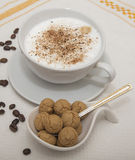 Cappuccino and amarettini Royalty Free Stock Photos