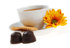 Cappuccino, biscuits, chocolate and flower Royalty Free Stock Image