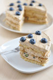 Cappuccino Blueberry Cake Royalty Free Stock Photography