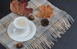 Cappuccino chaud Autumn Time de café de tasse de thé Photographie stock libre de droits