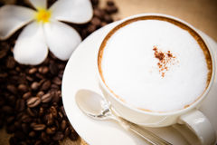 Cappuccino coffee cup and beans Royalty Free Stock Photos