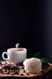 Cappuccino coffee cup Royalty Free Stock Image