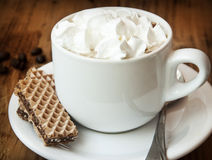 Cappuccino Cup with Cream and Cookies Royalty Free Stock Photo