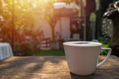 Cappuccino kawa w białej filiżance na drewnianym stole w ogródzie z mo Zdjęcia Royalty Free