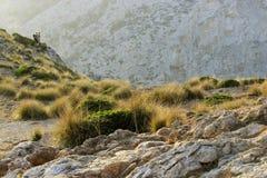 Cappuccio de Formentor su Mallorca, Spagna fotografia stock