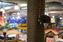 Cappuccio della decorazione con il cappuccio delle coperture, decorazione, corda Fotografia Stock