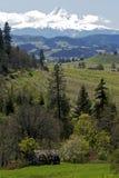 Cappuccio di Mt e paesaggio dell'Oregon Fotografia Stock Libera da Diritti