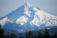 Cappuccio Oregon di Mt Immagini Stock