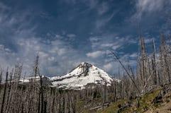 Cappuccio Oregon di Mt Fotografie Stock Libere da Diritti