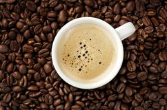 Cappucino on coffee beans. Image of a Cappuccino on coffee beans royalty free stock image