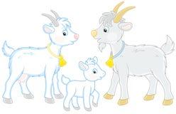 Capra, bambino e lui-capra Fotografia Stock
