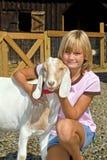 Capra dell'animale domestico e della ragazza Fotografia Stock