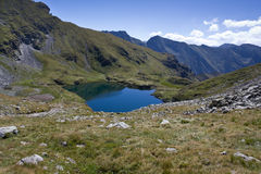 Capra Lake. Glacial Capra (Goat) Lake Fagaras Mountains, Romania Royalty Free Stock Photos