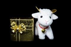 Capra o pecore con il contenitore di regalo Fotografie Stock