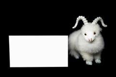 Capra o pecore con la cartolina d'auguri in bianco Fotografie Stock Libere da Diritti