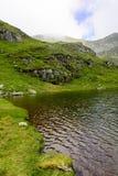 Capra sjö i FăgăraÈ™ berg Royaltyfri Bild