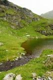 Capra sjö i FăgăraÈ™ berg Arkivfoto