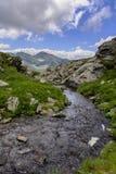 Capra strumień w FăgăraÈ™ górach Obrazy Stock