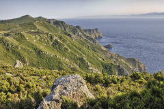 Capraia cliffs Stock Photography