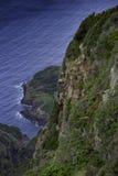 Capraia Island, Arcipelago Toscano National Park, Tuscany, Italy. Trekking trail to the tower of Zenobito and Calarossa among arbutus trees, asfodelie flowers Stock Images