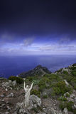 Capraia Island, Arcipelago Toscano National Park, Tuscany, Italy. Trekking trail to the tower of Zenobito and Calarossa among arbutus trees, asfodelie flowers Stock Photo