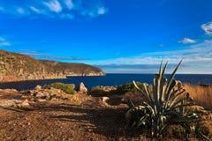 Capraia Island Stock Photo