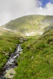 Capraström i FăgăraÈ™ berg Fotografering för Bildbyråer