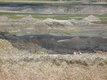 Capre nel parco nazionale dei calanchi fotografie stock libere da diritti
