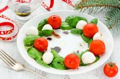 Caprese沙拉塑造了圣诞节花圈-欢乐C的滑稽的想法 免版税库存照片