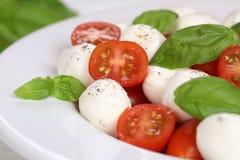 Caprese沙拉用蕃茄、蓬蒿和无盐干酪在板材 库存图片